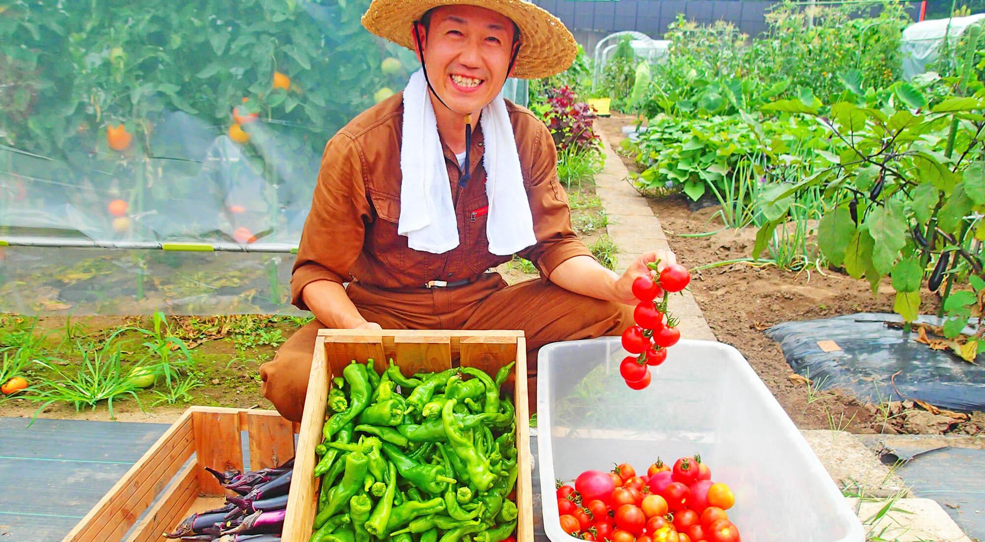 市原の畑で無農薬野菜の栽培をしている