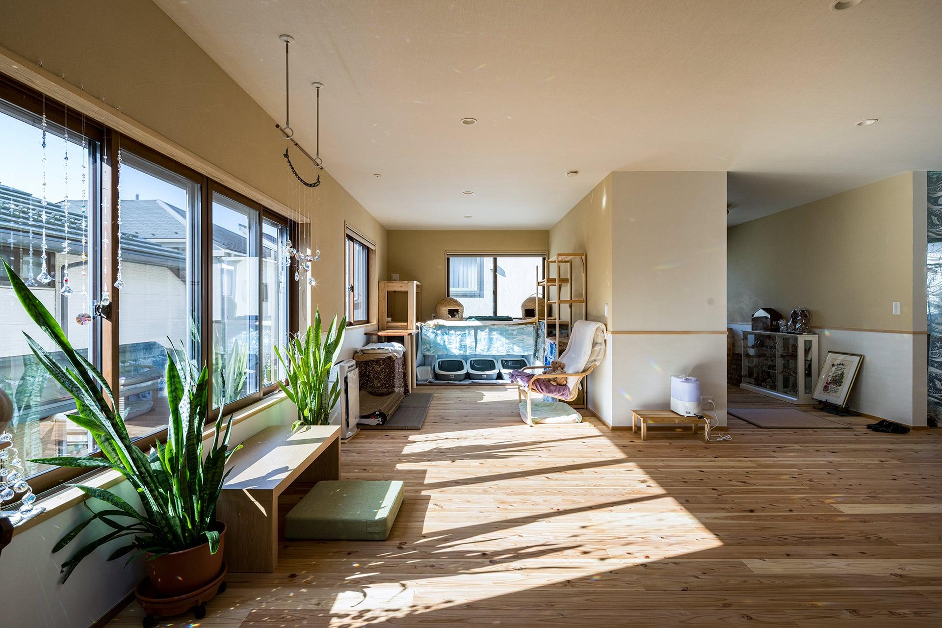 猫ちゃんとのびのび暮らす木の家 | こだわりの自然素材・天然素材の注文住宅・リノベーション(フルリフォーム)の駿河屋